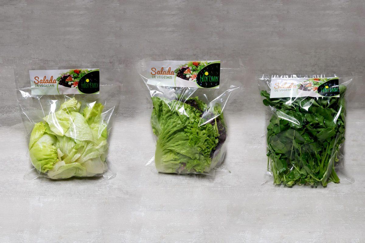 Linha de saladas higienizadas
